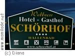 Saalfelden Hotel Schörhof