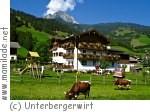 Dorfgastein Unterbergerwirt