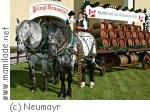 Salzburg Stiegl Bauernherbst