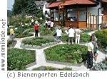 Bienengarten Edelsbach