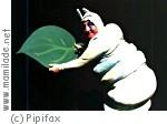 """Pipifax: """"Die kleine Raupe Nimmersatt"""" ü"""