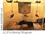 Alchemistenmuseum Kirchberg am Wagram ü