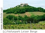 Naturpark Leiser Berge ü