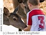 Bauer & Wirt Langthaler in Pömling