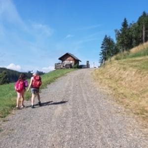 Wipfelwanderweg Rachau bei Knittelfeld