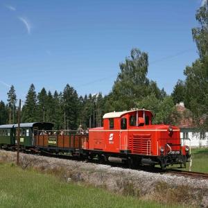 Schmalspurbahn Wackelsteinexpress