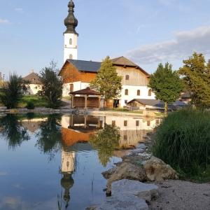 Naturerfahrungsgelände beim Naturteich in Köstendorf