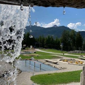 Wasser- und Erlebniswelt Bärenbachl in Steinach am Brenner