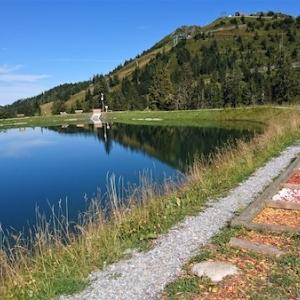 Barfußweg am Spiegelsee