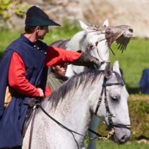 Falknern in historischen Kostümen