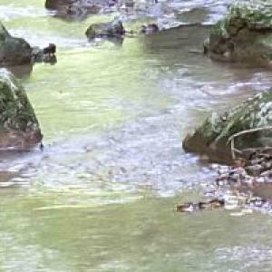 Zwettl Kamp Flusswanderung