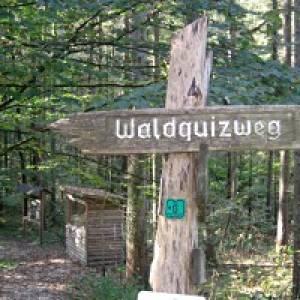Waldquizweg Großgmain