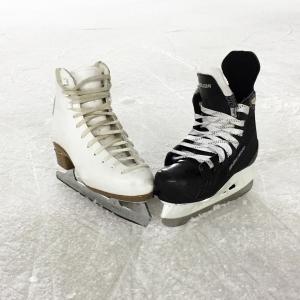Eislaufen in der Ossiacher See Halle