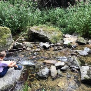Familienwanderung dem Pesenbach entlang