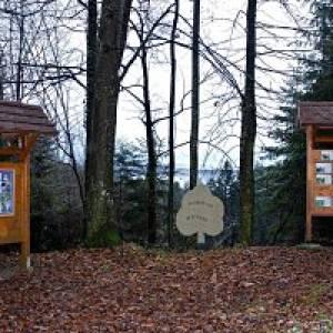 Wald- und Naturlehrpfad Hollenegg