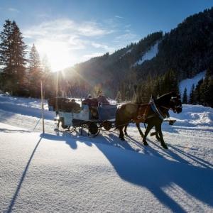 Filzmoos Pferdeschlittenfahrten