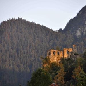 Ruine Scharnstein