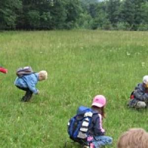 Villach Waldpädagogische Führungen