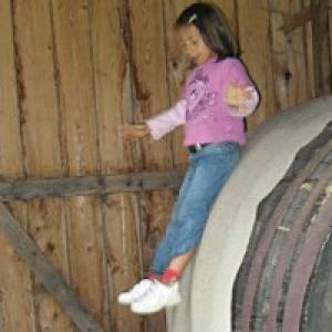 Kinderwelt Schlosspark Walchen