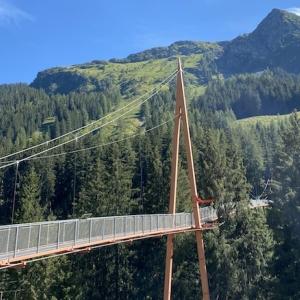 Baumwipfelweg und Golden Gate