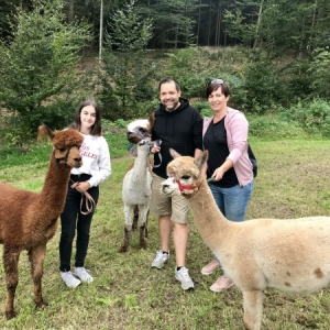 Mami-Check: Alpaka Wanderung Bad Zell