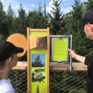 Am Weg sind informativ und kindgerecht gestaltete Infotafeln (auf deutsch und englisch).