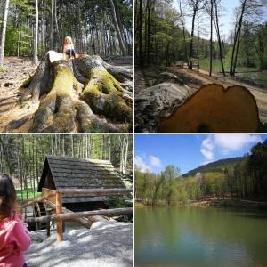 Naturpark Sparbach, Mami-Check