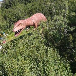 Dinos überall