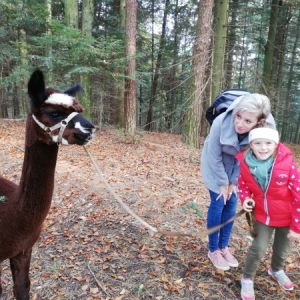 Mami-Check: Regenbogen Alpaka Wanderung