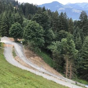 Mountaincart am Kitzbüheler Horn