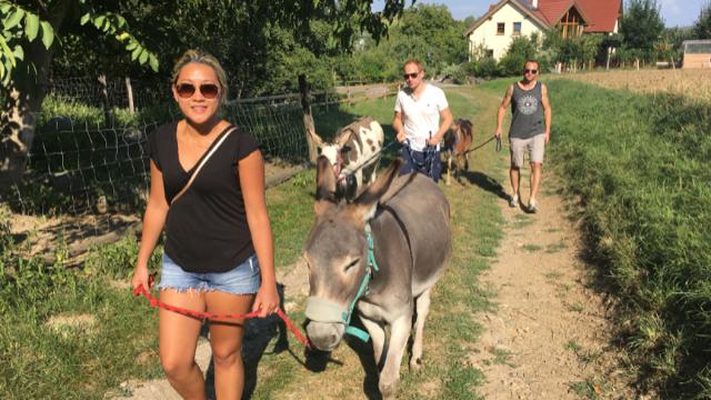 Tierischer Ausflug