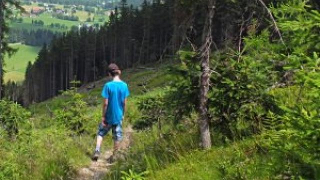 Hirschenkogel Gipfel Rundwanderweg