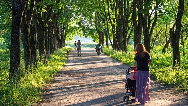 Symbolfoto Kinderwagentaugliche Wanderung am Kristberg