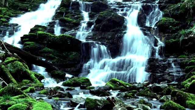 Wanderung zu den Brühlbach-Wasserfällen in Andelsbuch