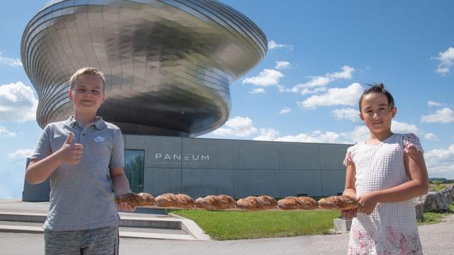 (c) Paneum