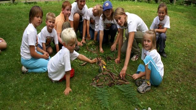 Niedernsill Sommerprogramm Elfen