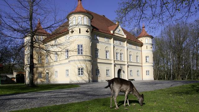 Tierpark Schloss Mageregg