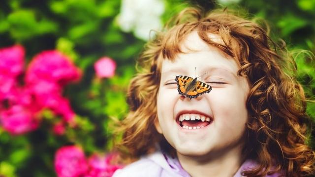Schmetterlingswelt Tattendorf