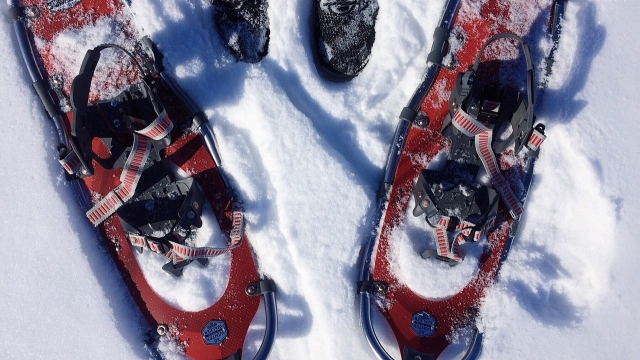 Symbolfoto Schneeschuhwandern in Innerkrems