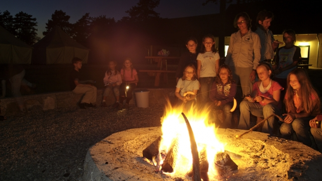Feriencamp im Nationalpark Donau-Auen