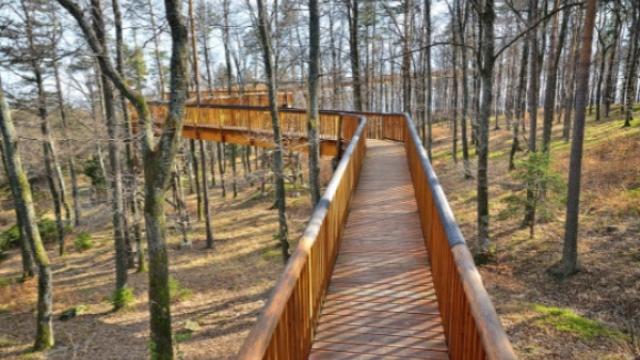 Walderlbnisweg Naturpark Geschriebenstein-Irottkö