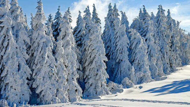 Symbolfoto Winterwandern am Muttersberg bei Bludenz